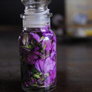 Elixir alchimique