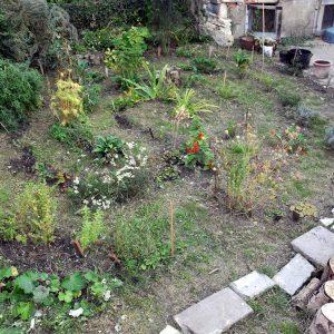 Labyrinthe Jardin